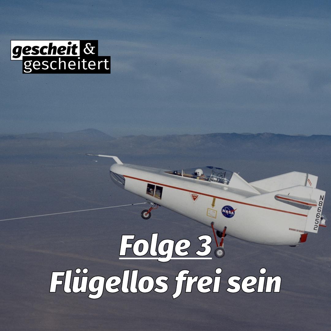 #3 – Flügellos frei sein